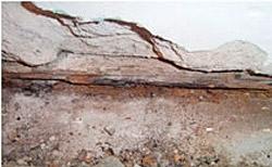 Schäden und Sanierung
